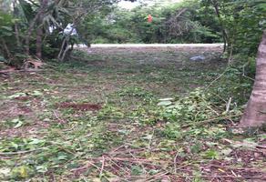Foto de terreno comercial en venta en carretera libre a mérida , leona vicario, felipe carrillo puerto, quintana roo, 17215666 No. 01