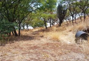 Foto de terreno habitacional en venta en carretera libre a zapotlanejo – tepatitlan , zapotlanejo, zapotlanejo, jalisco, 0 No. 01