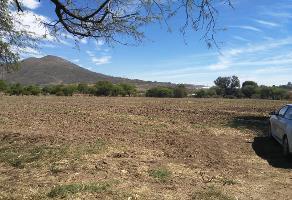 Foto de terreno comercial en venta en carretera libre buenavista , buenavista, tlajomulco de zúñiga, jalisco, 12728647 No. 01