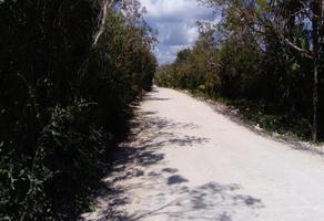 Foto de terreno habitacional en venta en carretera libre cancún-mérida , supermanzana 1 centro, benito juárez, quintana roo, 16799983 No. 01