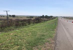 Foto de terreno comercial en venta en carretera libre la piedad-irapuato , las animas, irapuato, guanajuato, 0 No. 01