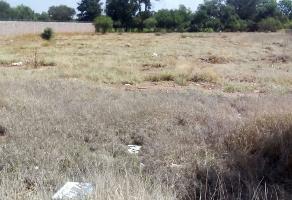 Foto de terreno habitacional en venta en carretera loreto, agauscalientes , el puertecito, aguascalientes, aguascalientes, 14617401 No. 01