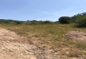 Foto de terreno habitacional en venta en carretera malinalco , malinalco, malinalco, méxico, 19004596 No. 01