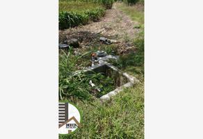 Foto de terreno habitacional en venta en carretera mazatepec a ramal a michapa 39, cuahuchichinola, mazatepec, morelos, 9750076 No. 01