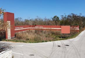 Foto de terreno comercial en venta en carretera mérida - chicxulub puerto , chicxulub, chicxulub pueblo, yucatán, 18473095 No. 01