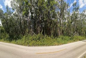 Foto de terreno comercial en venta en carretera mérida-cancún libre, parcela #192, poblado de leona vicario , leona vicario, felipe carrillo puerto, quintana roo, 19060826 No. 01