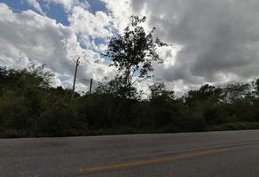 Foto de terreno comercial en venta en carretera mérida-cancún libre, parcela #192, poblado de leona vicario , leona vicario, felipe carrillo puerto, quintana roo, 19060938 No. 01
