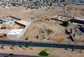 Foto de terreno comercial en renta en carretera mexicali tijuana , el porvenir, mexicali, baja california, 0 No. 01
