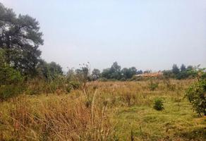 Foto de terreno habitacional en venta en carretera méxico cuatla , nepantla de sor juana inés, tepetlixpa, méxico, 6913244 No. 01