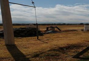 Foto de terreno habitacional en venta en carretera méxico - puebla , santa rita tlahuapan, tlahuapan, puebla, 0 No. 01
