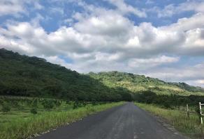 Foto de terreno habitacional en venta en carretera mexico tuxpan , venustiano carranza, venustiano carranza, puebla, 0 No. 01