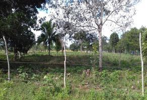 Foto de rancho en venta en carretera miguel hidalgo - caan lumil, kilometro s/n , hidalgo, othón p. blanco, quintana roo, 19352141 No. 01