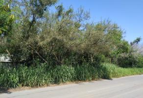 Foto de terreno habitacional en venta en carretera montemorelos-rayones , calles, montemorelos, nuevo león, 0 No. 01
