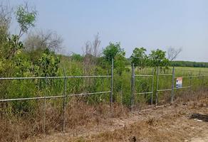 Foto de terreno habitacional en venta en carretera nacional , calles, montemorelos, nuevo león, 0 No. 01