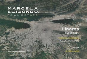 Foto de terreno comercial en renta en carretera nacional linares-cd. victoria kilometro 146 , tepeyac, linares, nuevo león, 17663564 No. 01