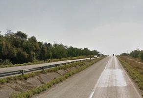 Foto de terreno comercial en venta en carretera nacional , montemorelos centro, montemorelos, nuevo león, 0 No. 01