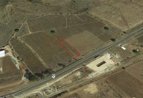Foto de terreno habitacional en venta en carretera nogales , amatitan, amatitán, jalisco, 6289222 No. 01