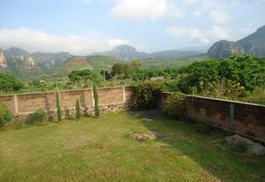 Foto de terreno habitacional en venta en carretera oo, tlayacapan, tlayacapan, morelos, 5312324 No. 01