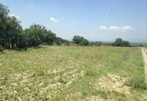 Foto de terreno industrial en venta en carretera otumba , san bartolo alto, axapusco, méxico, 0 No. 01