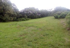 Foto de terreno habitacional en venta en carretera panamericana atlacomulco- palmillas , san jerónimo, aculco, méxico, 10123991 No. 01