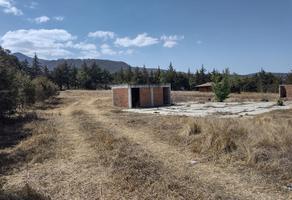Foto de terreno habitacional en venta en carretera patzcuaro morelia , las trojes, pátzcuaro, michoacán de ocampo, 0 No. 01