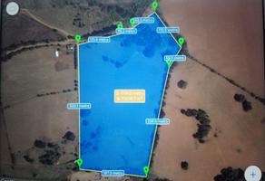 Foto de terreno comercial en venta en carretera , pátzcuaro, pátzcuaro, michoacán de ocampo, 0 No. 01