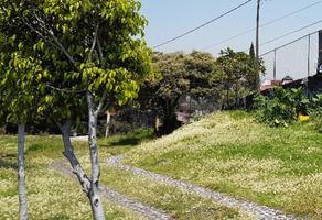 Foto de terreno habitacional en renta en carretera picacho ajusco 800 , jardines del ajusco, tlalpan, df / cdmx, 14790083 No. 01