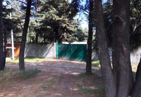 Foto de terreno habitacional en venta en carretera picacho ajusco kilometro 13 lote 11,manzana 10, héroes de 1910, tlalpan, df / cdmx, 0 No. 01