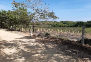Foto de terreno habitacional en venta en carretera pochutla-puerto escondido s/n , san isidro del palmar, santa maría tonameca, oaxaca, 15561573 No. 01