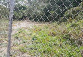 Foto de terreno habitacional en venta en carretera principal nayarit 00, las peñas, puerto vallarta, jalisco, 16922614 No. 01