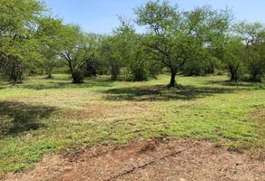 Foto de terreno habitacional en venta en carretera rayones , rayones, rayones, nuevo león, 10728403 No. 01