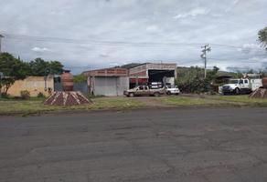 Foto de bodega en venta en carretera sahuayo jiquilpan , el ramireño, jiquilpan, michoacán de ocampo, 0 No. 01