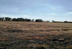 Foto de terreno comercial en venta en carretera salamanca la ordeña , oteros, salamanca, guanajuato, 11596372 No. 01