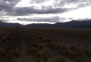 Foto de terreno habitacional en venta en carretera san antonio 000, el 18 de marzo, arteaga, coahuila de zaragoza, 0 No. 01