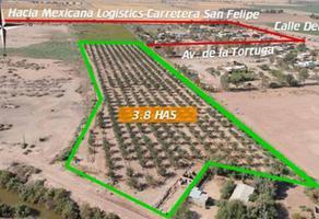 Foto de terreno habitacional en venta en carretera san felipe , granjas santa cecilia, mexicali, baja california, 9531735 No. 01