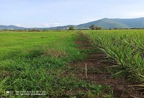 Foto de terreno habitacional en venta en carretera san isidro mazatepec , san antonio, tlajomulco de zúñiga, jalisco, 18800120 No. 01