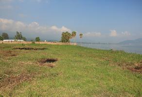 Foto de terreno habitacional en venta en carretera san juan evangelista , cajititlán, tlajomulco de zúñiga, jalisco, 3678730 No. 01