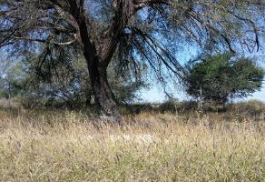 Foto de terreno habitacional en venta en carretera san luis - matehuala, la concha ejido el zapote , enrique estrada (la concha), soledad de graciano sánchez, san luis potosí, 10713544 No. 01