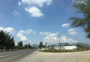 Foto de terreno comercial en renta en carretera san miguel cuyutlan 30, san miguel cuyutlan, tlajomulco de zúñiga, jalisco, 5686881 No. 01