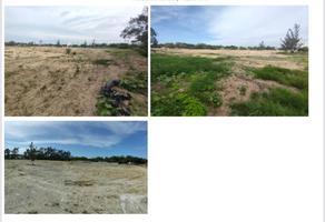 Foto de terreno comercial en renta en carretera tampico mante , puerto industrial de altamira, altamira, tamaulipas, 0 No. 01