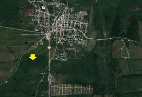 Foto de rancho en venta en carretera tampico-tuxpan , buenavista, tampico alto, veracruz de ignacio de la llave, 7272492 No. 01