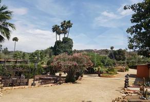 Foto de terreno habitacional en venta en carretera tecate-ensenada , tecate, tecate, baja california, 14225557 No. 01