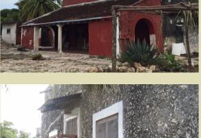 Foto de rancho en venta en carretera temax , temax, temax, yucatán, 0 No. 01