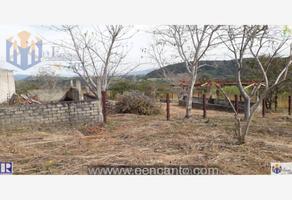 Foto de terreno industrial en venta en carretera tepic-mazatlan , el rincón, tepic, nayarit, 8532791 No. 01