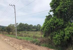 Foto de terreno habitacional en venta en carretera tepic-puerto vallarta , lima de abajo, compostela, nayarit, 15199752 No. 01