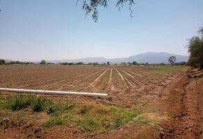Foto de terreno comercial en venta en carretera tequisquiapan 1, el vergel, tequisquiapan, querétaro, 0 No. 01