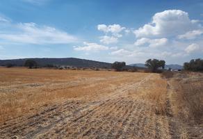 Foto de terreno habitacional en venta en carretera tolcayuca-zapotlan , zapotlán de juárez centro, zapotlán de juárez, hidalgo, 14350224 No. 01