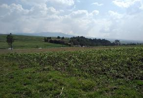 Foto de terreno habitacional en venta en carretera toluca-morelia , san luis mextepec, zinacantepec, méxico, 15371601 No. 01