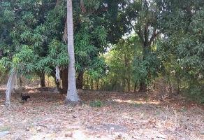 Foto de terreno habitacional en venta en carretera tuncingo , tuncingo, acapulco de juárez, guerrero, 10535388 No. 01