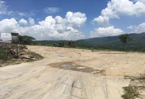 Foto de terreno comercial en venta en carretera tuxtla-ocozocuautla kilometro 142 s/n